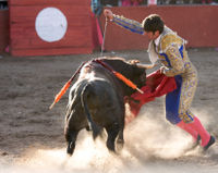 Anti-Bullfighting City Forced to Host Bullfight!