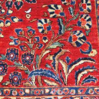 Floral and Curvilinear Rugs