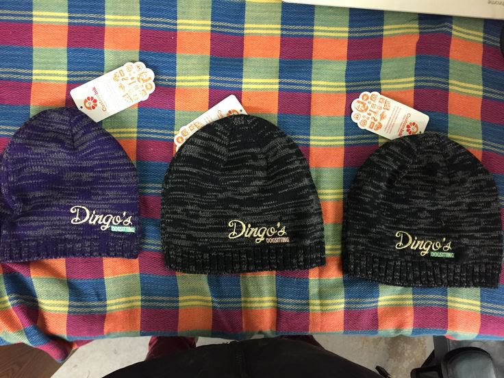 beanie knit hat dingos dogsitting