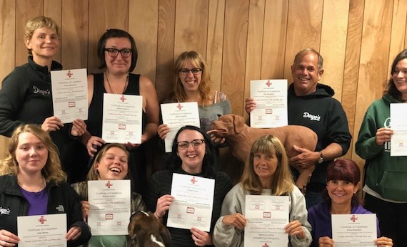 The Dingo's staff is certified in Canine CPR