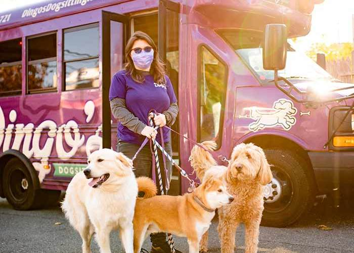 ashley outside dingos bus with dogs