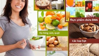 Chế độ dinh dưỡng thai kỳ của bà bầu gồm những gì?