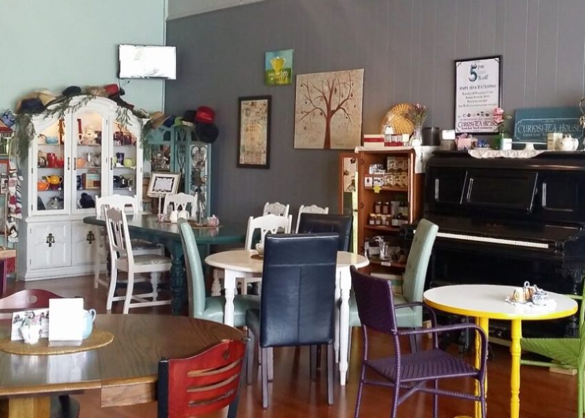 eclectic seating Curiosi-Tea