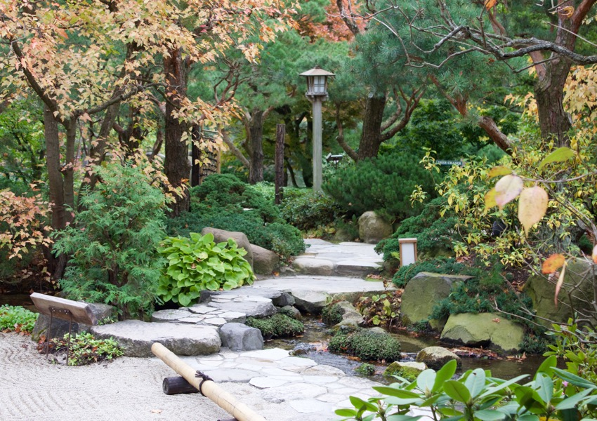 Serenity found at Anderson Japanese Gardens