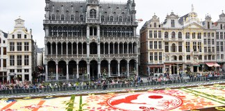 2016 Brussels Flower Carpet