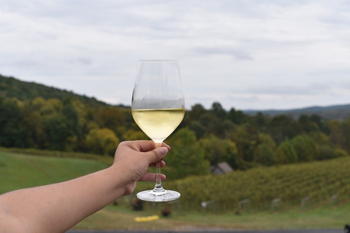 Virginia Wine Delaplane