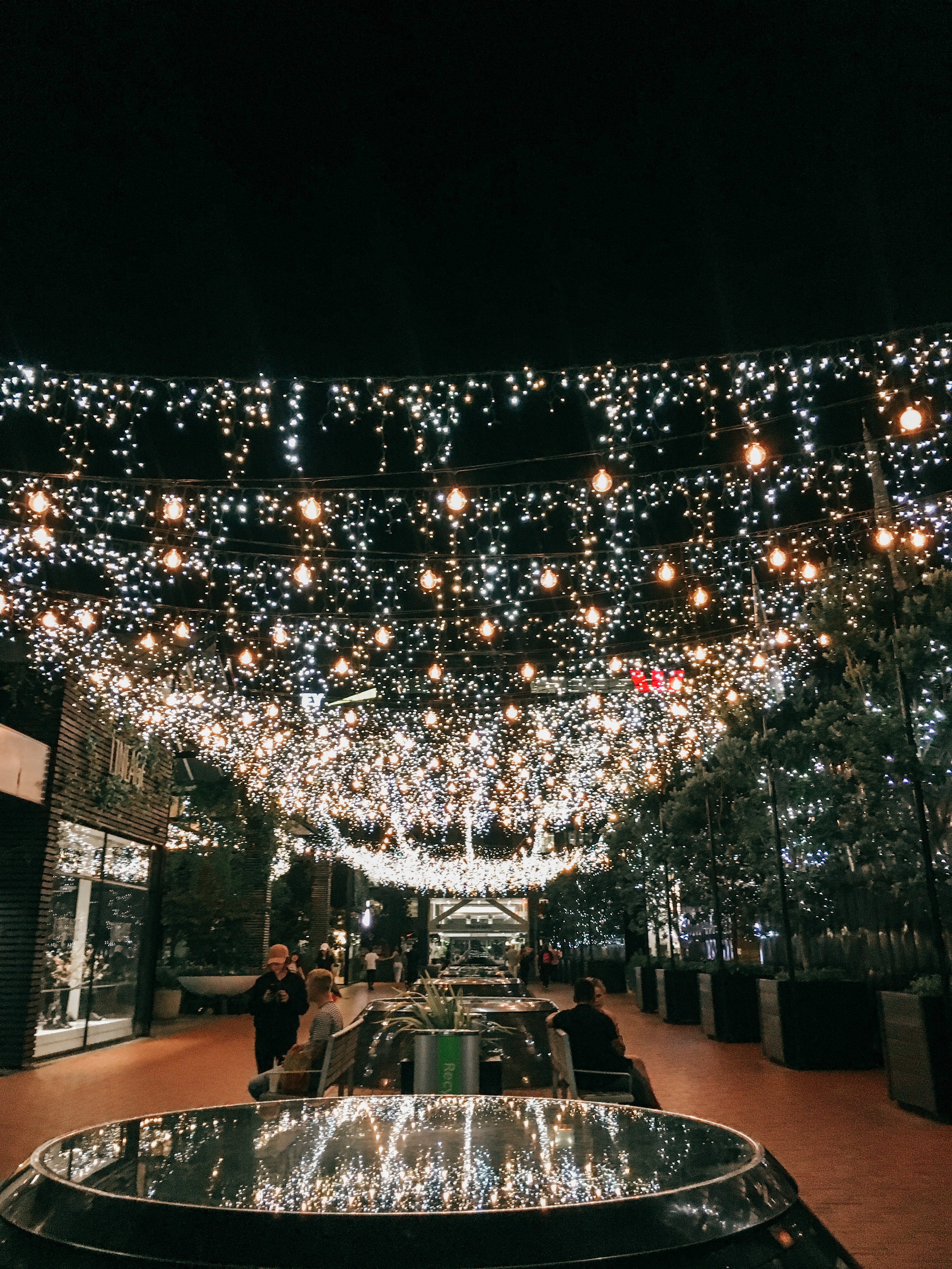 Pretty lights in Auckland, New Zealand