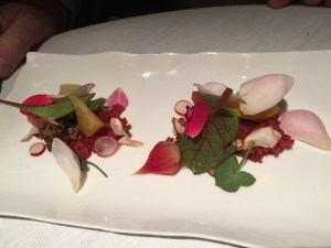 Chioggia beets with roses, porcini mushrooms and verbena