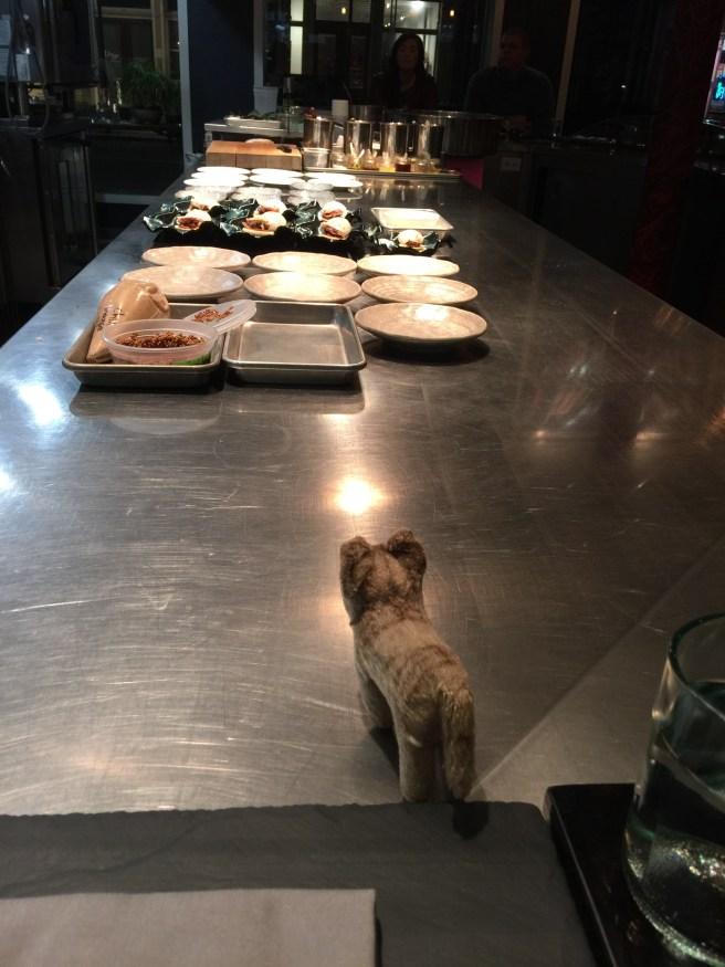 Frankie watched preparations