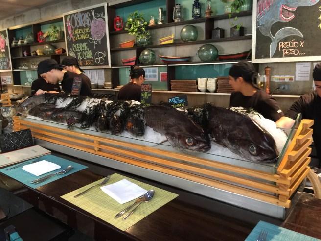 fish at the bar end