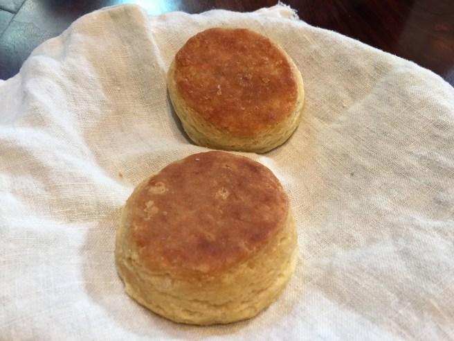 hot biscuits