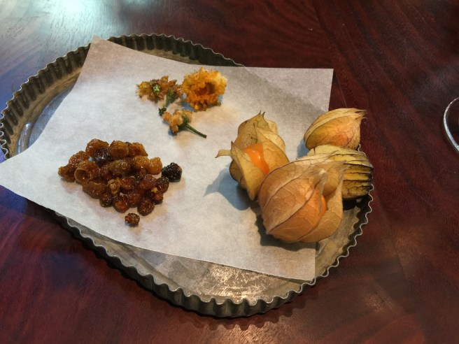 Gooseberries fresh, dried and flowers of