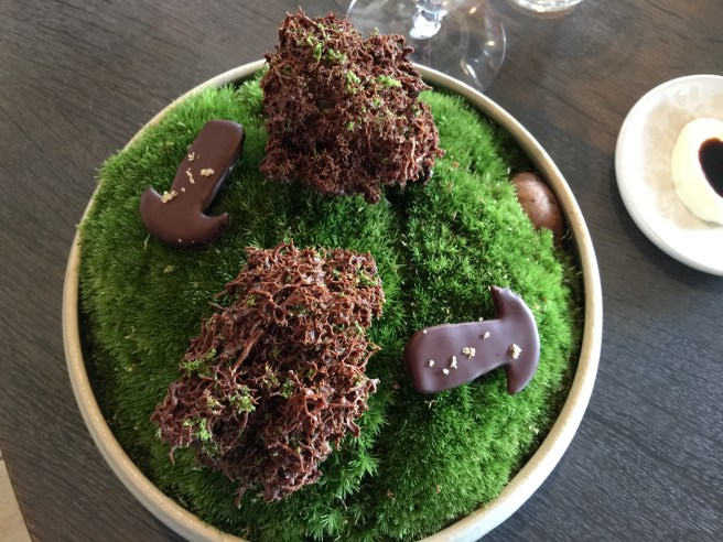 Moss cooked in chocolate, cep mushroom