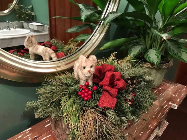 Frankie checked out the Christmas arrangement