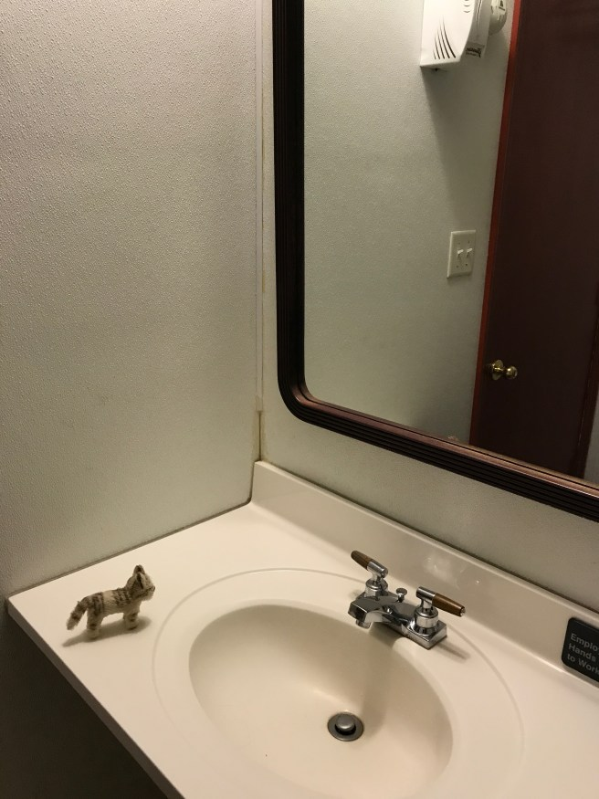 Frankie said the bathroom was simple but functional