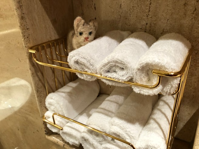 Frankie snuggled with the hand towels