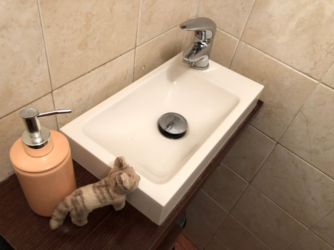 Frankie liked the tiny sink