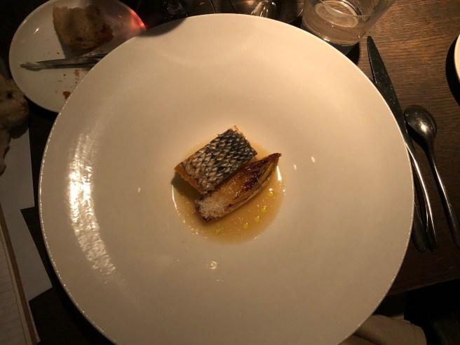 Striped bass, chicory and hazelnut