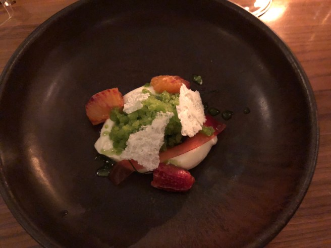 Warm blood orange, sheep's milk yoghurt and wild fennel granita