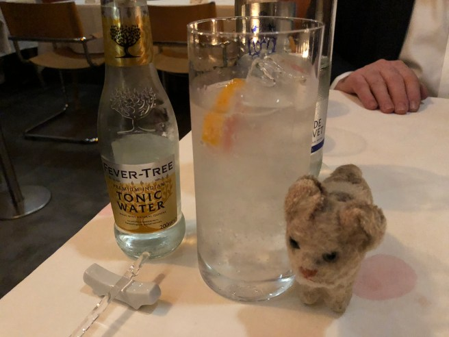 Frankie and my gin and tonic