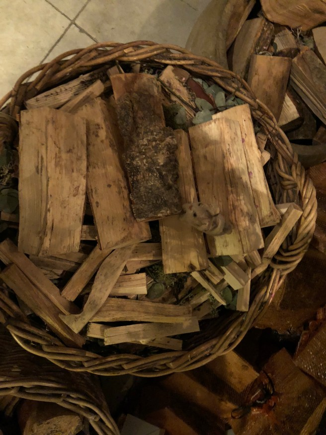 Frankie found their wood pile