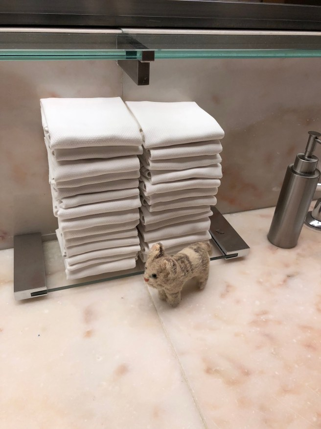 Frankie pointed out the hand towels