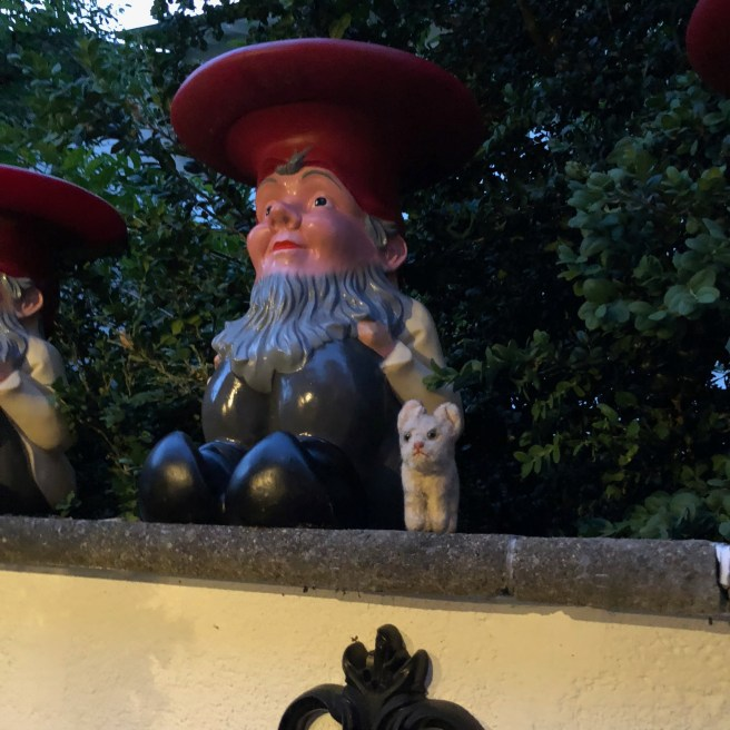 Frankie found another gnome