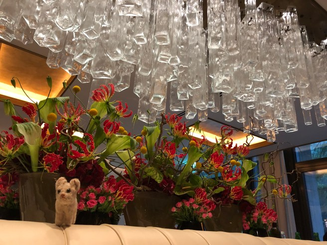 Frankie enjoyed the flowers and light fixture