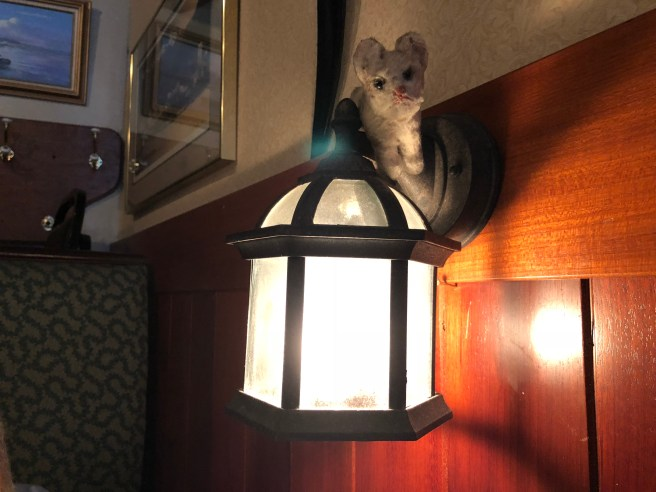 Frankie checked out the table light