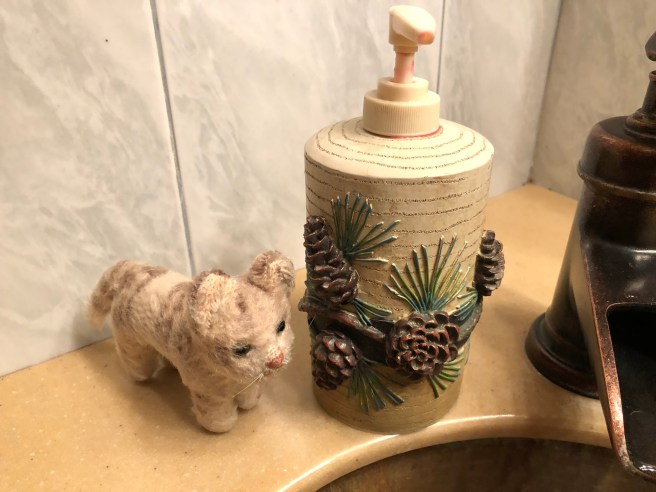 Frankie found a woodsy soap dispenser