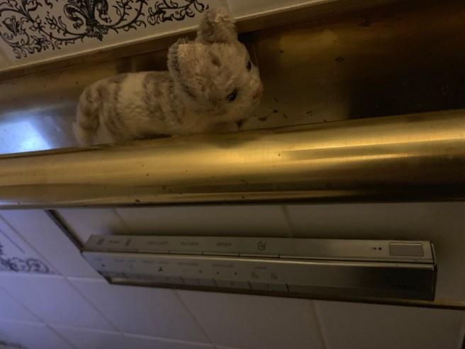 Frankie climbed in