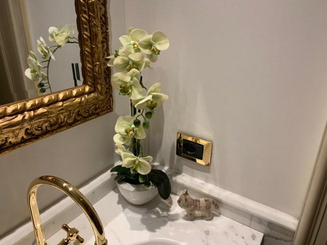 frankek found an orchid