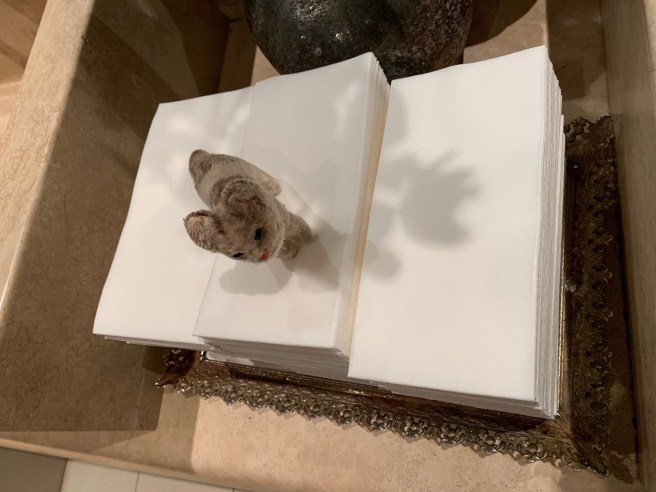Frankie tested the hand towels