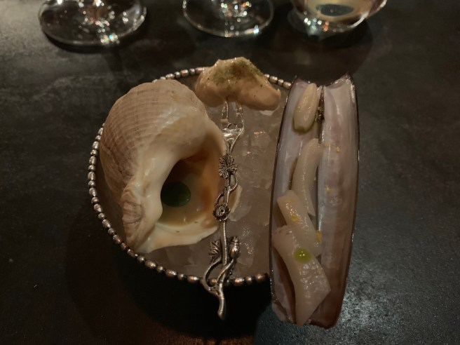 chilled shellfish (razor clam and welk)