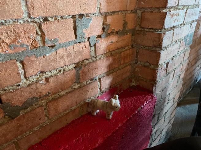 Frankie found a ledge to explore