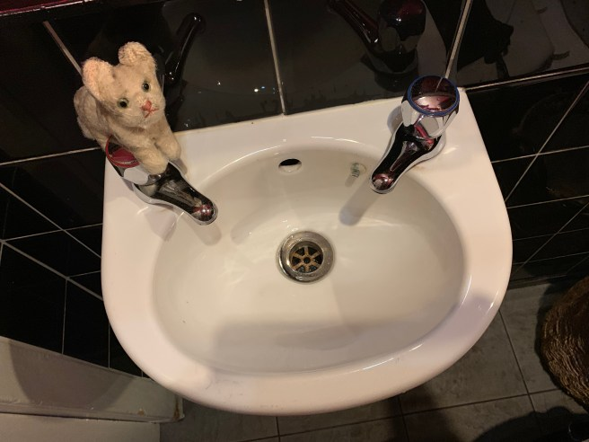 Frankie thoguht the sink was her size