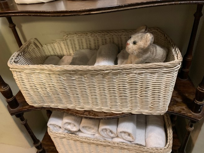 Frankie played in the hand towel basket