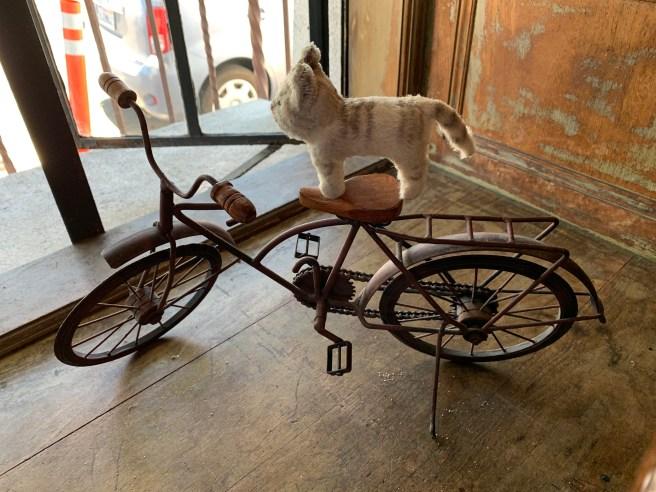 Frankie took a bike ride