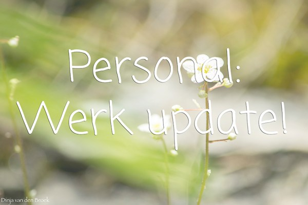 Werk update