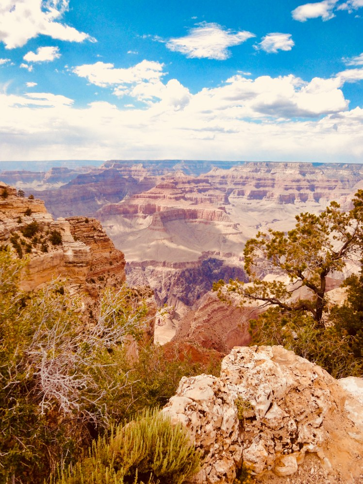 Grand Canyon vistas