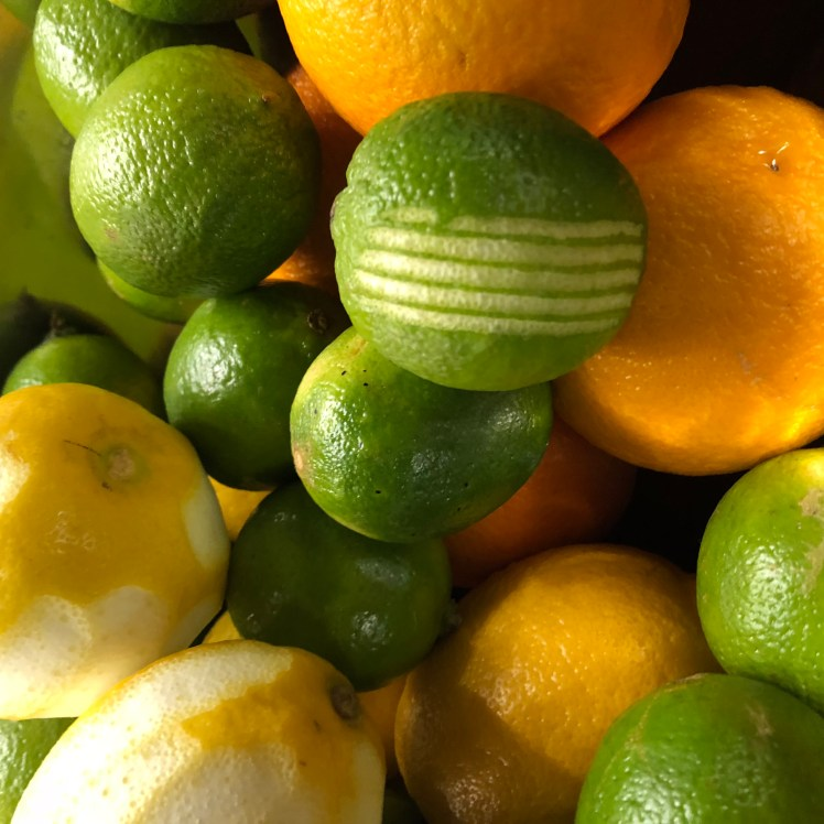 Limes, oranges and lemons