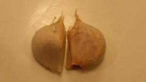Garlic_with_skin