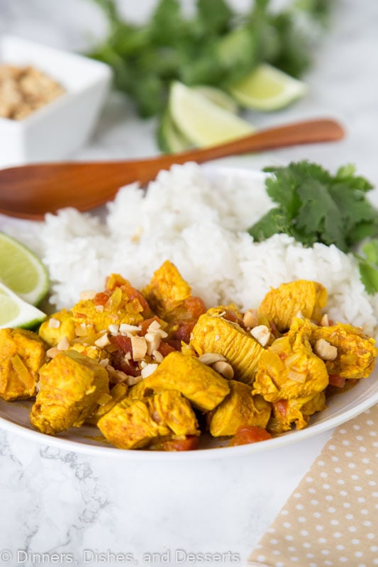 Chicken Vindaloo - A spicy Indian curry you can make at home. Lots of spices some together for a super flavorful dinner. Serve over rice or with naan bread.