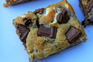 S'mores Bars on white plate
