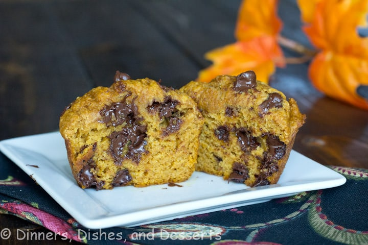 Pumpkin Chocolate Chip Muffins - Healthy version of homemade pumpkin muffins with lots of chocolate chips. Perfect to have in the freezer for a busy morning or an after school snack.