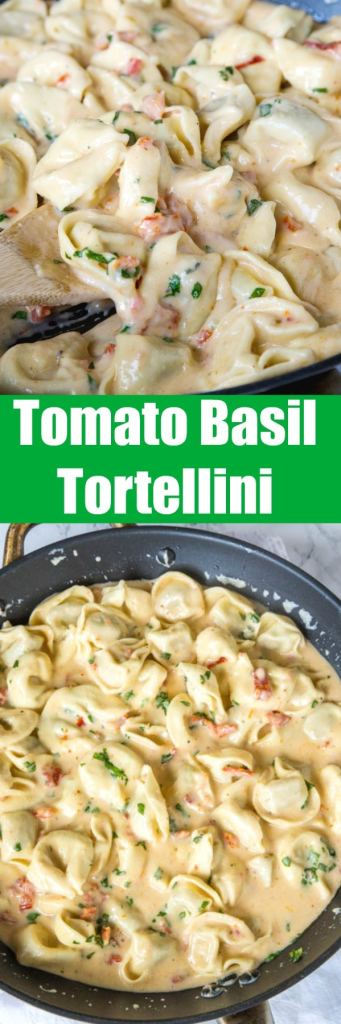 Tomato-Basil Tortellini - a rich and creamy pasta dinner the whole family will love. Ravoili or Tortellini tossed in a sun-dried tomato cream sauce and plenty of fresh basil!