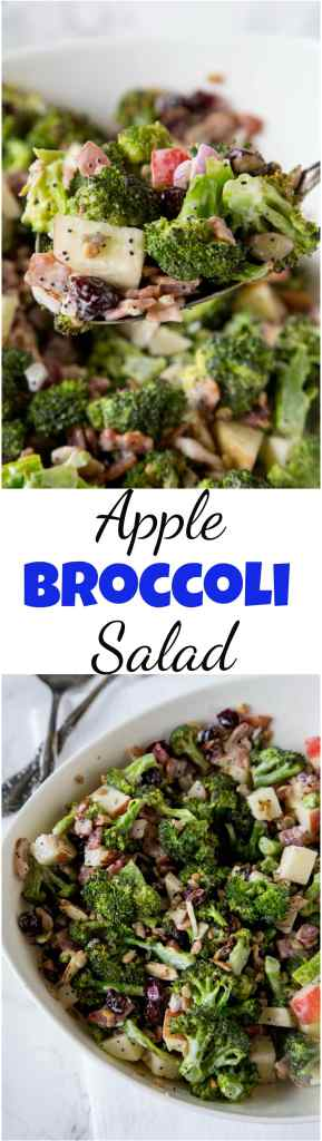 Broccoli Salad Recipe - roasted broccoli salad with bacon, apples, cranberries, almonds, sunflower seeds and a creamy poppy seed dressing!