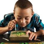 Dinosaurier Spielzeug Triceratops-Grabungsset - Dinosaurier-Ausgrabungsset - Grabe echte Dino-Fossilien aus! - 4