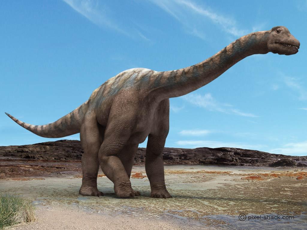 Resultado de imagen para Argentinosaurus huinculensis