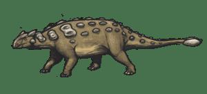 North American Ankylosaurus magniventris